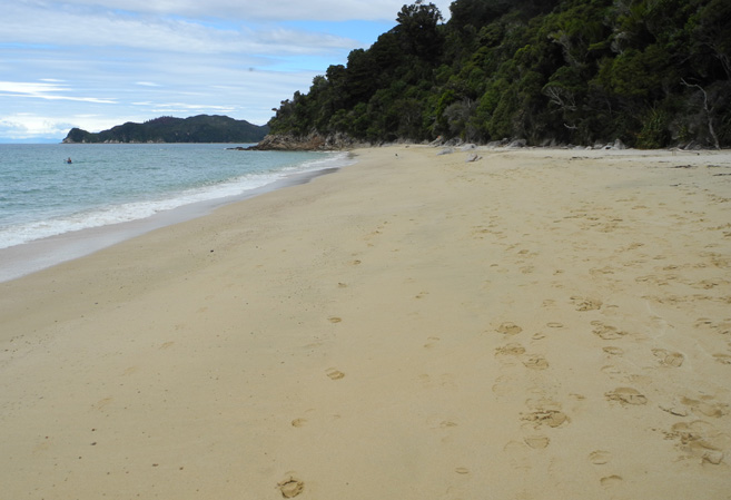 足跡以外、ペットボトルひとつ見られない浜辺