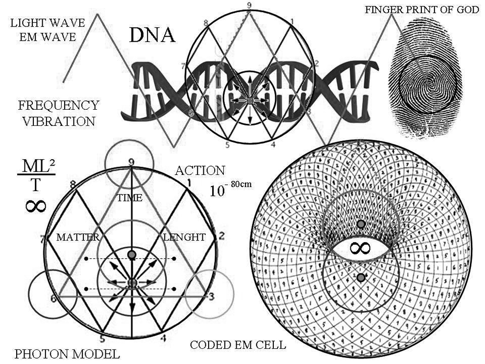 3 4 3 fractal nature of consciousness