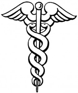 1 4 2 Caduceus_large