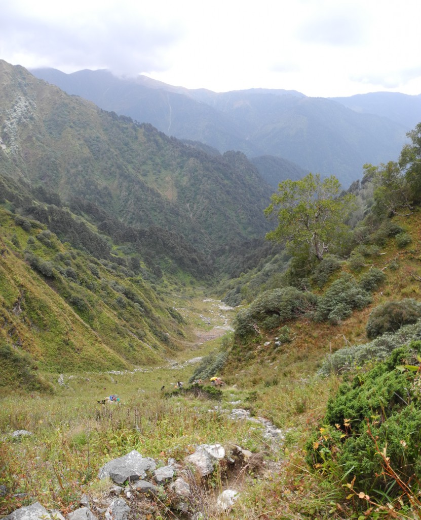 3日目、急な登りをゆく4匹のロバ隊(標高約3800m)