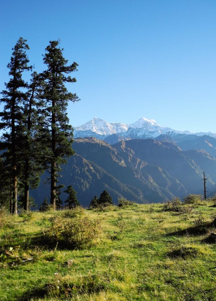 6日目、下山途中の草原のキャンプ地にて(標高3450m)