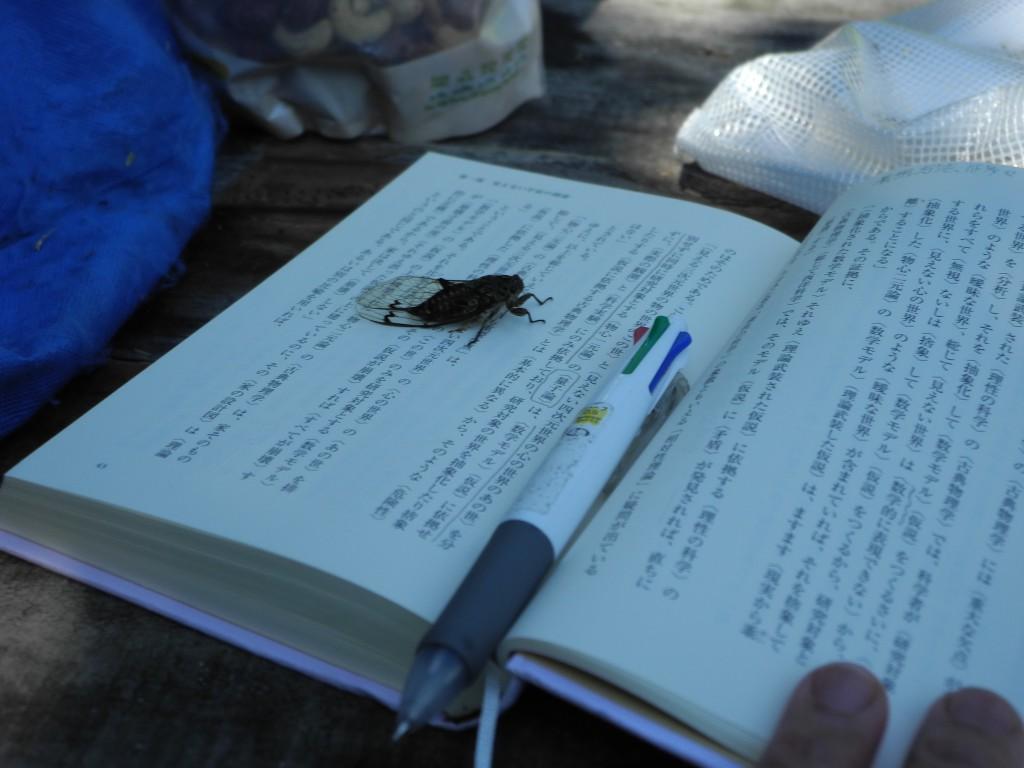 湖畔の木陰で読書中、予期せぬ自然の歓迎をうけた。